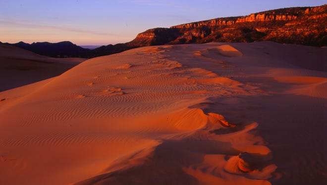 The sand glows pink year-round at Utah's Coral Pink Sand Dunes State Park, thanks to massive dunes that get their color from the region's distinctive red rocks.