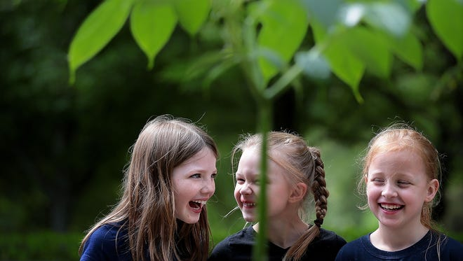Riverdale Elementary students Hainsley Pleasants (left), Kate Phipps and Anna Ruth Deupree giggle as they listen to Kyle McLane, the Memphis Botanic Garden's assistant director of horticulture, talk about the garden's newest resident, Hank the corpse flower (center), which after another seven years of growth will will become the largest flower type in the world. Unfortunately, the pending bloom has a down side: it stinks like death.