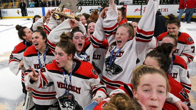 The Wellesley High School girls hockey team hoists the Division 2 championship trophy after defeating Notre Dame Academy in overtime in the state championship game at TD Garden in March of 2019.