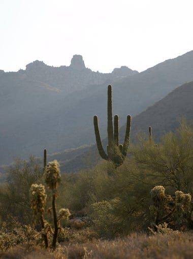 The McDowell Sonoran Preserve in Scottsdale.