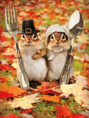 Happy Thanksgiving! Stay at home and enjoy the day with your family and friends!