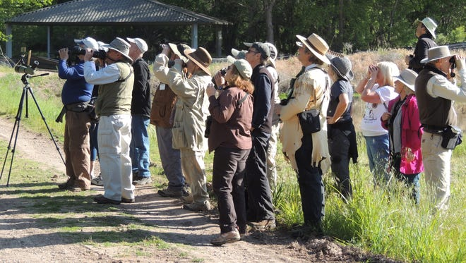 Binoculars come in handy on the field trips offered during the Verde Valley Birding and Nature Festival. More than 200 species have been spotted.