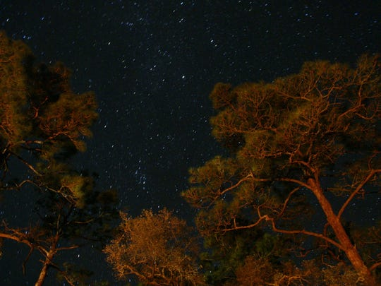 Ochlockonee River_2011 contest_Reid Jordan_Twisted Stars