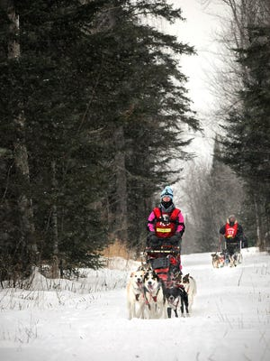 Musher Kayla Borntrager, 16, Elk River approaches a road crossing during the John Beargrease Sled Dog Marathon mid-distance race.