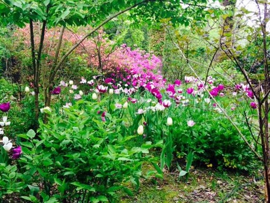Rivendel, Dr. Robert Seebacher's Ossining garden, will