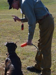 "Bill Autrey works with a dog at the annual ""duck dog tune-up"" event, hosted by the Central Louisiana Retriever Club."