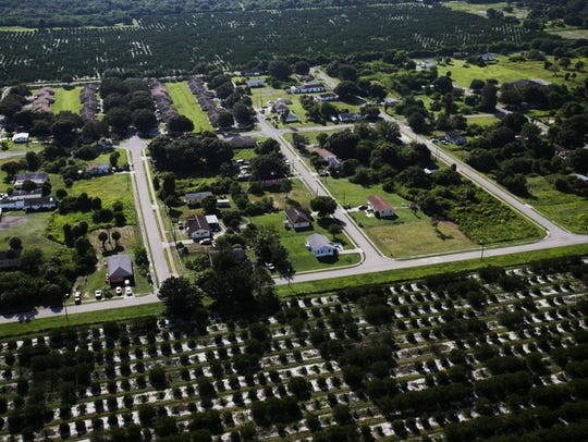 Orange groves surround the Charleston Park neighborhood