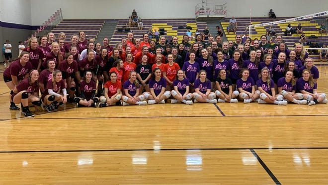 Teams pose after last year's Volley for a Cure at North Henderson. The event will still be held this year, but it won't involve multiple teams due to the coronavirus pandemic.