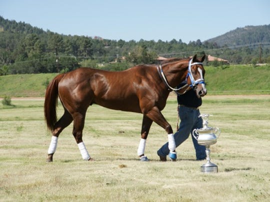 Ochoa, trained by Ruidoso Downs' Racehorse Hall of Famer Sleepy Gilbreath, dominated the 2011 All American Futurity by one-and-one-half lengths and the 2012 All American Derby by one-and-one-quarter lengths.