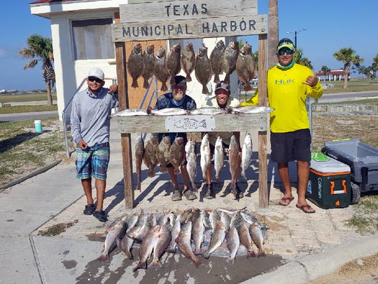 Andrew Serrano , Kevin Loper, William Hoffman, and Arthur Toscano caught these while fishing the south jetty in Port Aransas.