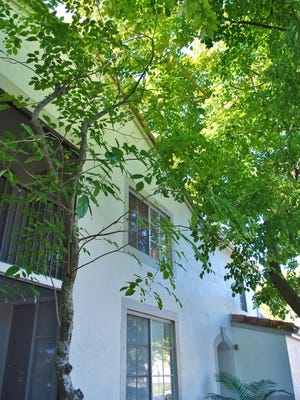 Shade from trees can reduce energy costs. However, there should be an 8 foot clearance between the branches and the roof or walls.