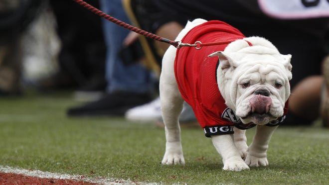 UGA X is seen in the first half of an NCAA college football game between Georgia and Georgia Tech in Athens, GA, on Saturday, Nov. 24, 2018.