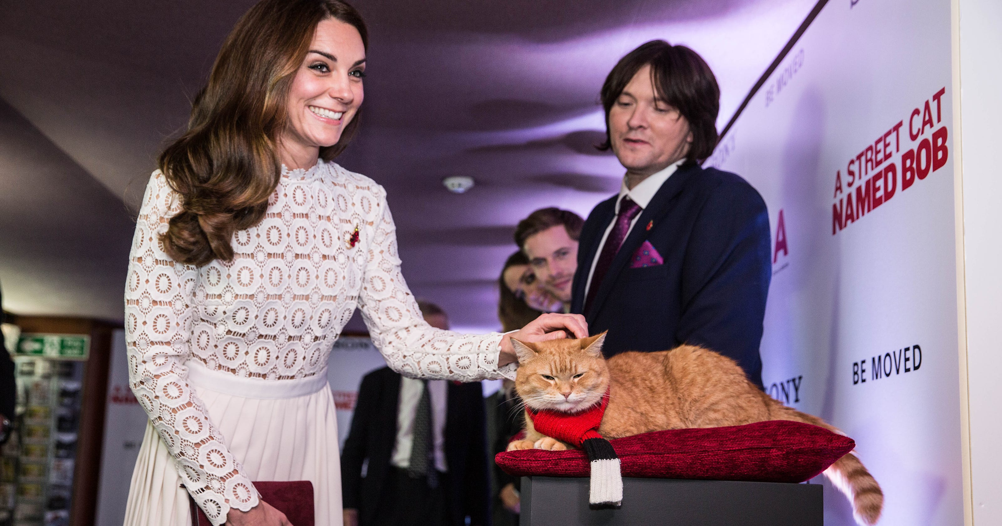 Hello Kitty Duchess Kate Meets Bob The Movie Star Cat