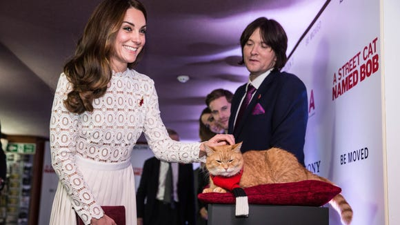 Hello Kitty Duchess Kate Meets Bob The Movie Star Cat
