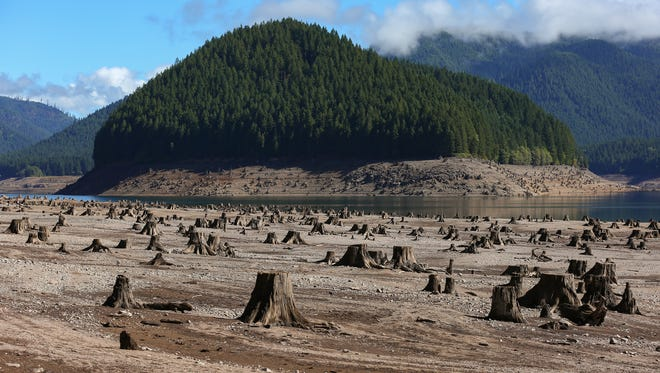 Old tree stumps are left exposed due to drought at Detroit Lake on Sept. 18 in Detroit.