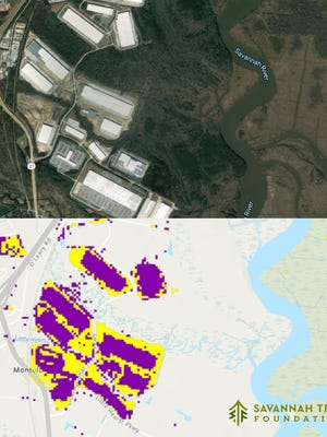 "Industrial buildings on the west side of Chatham show up in purple as ""urban"" cover in the Savannah Tree Foundation analysis with yellow bare soil around them."