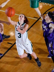 Williamston's Renee Sturm (3) puts up a layup against Fowlerville's Elie Smith Friday, Feb. 19, 2016, in Williamston, Mich.