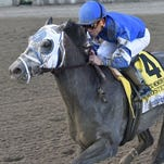 Frosted rallied to finish fourth Saturday.