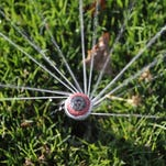 Under Visalia's water regulations, the watering of lawns is not allowed through February.