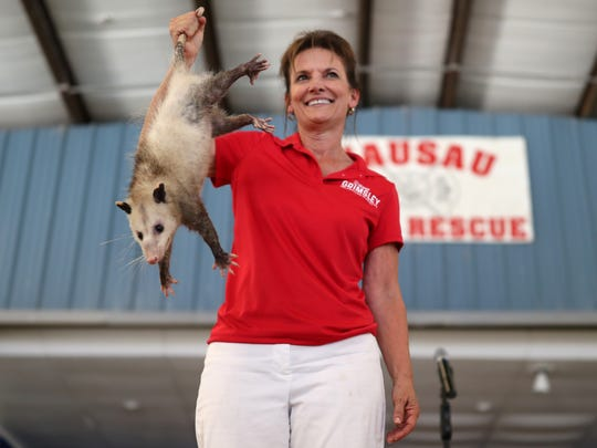 Candidate for Commissioner of Agriculture Denise Grimsley shows off the possum she won in a charitable bid during the Wausau Possum Festival in Washington County Fla. on Saturday, Aug. 4, 2018.