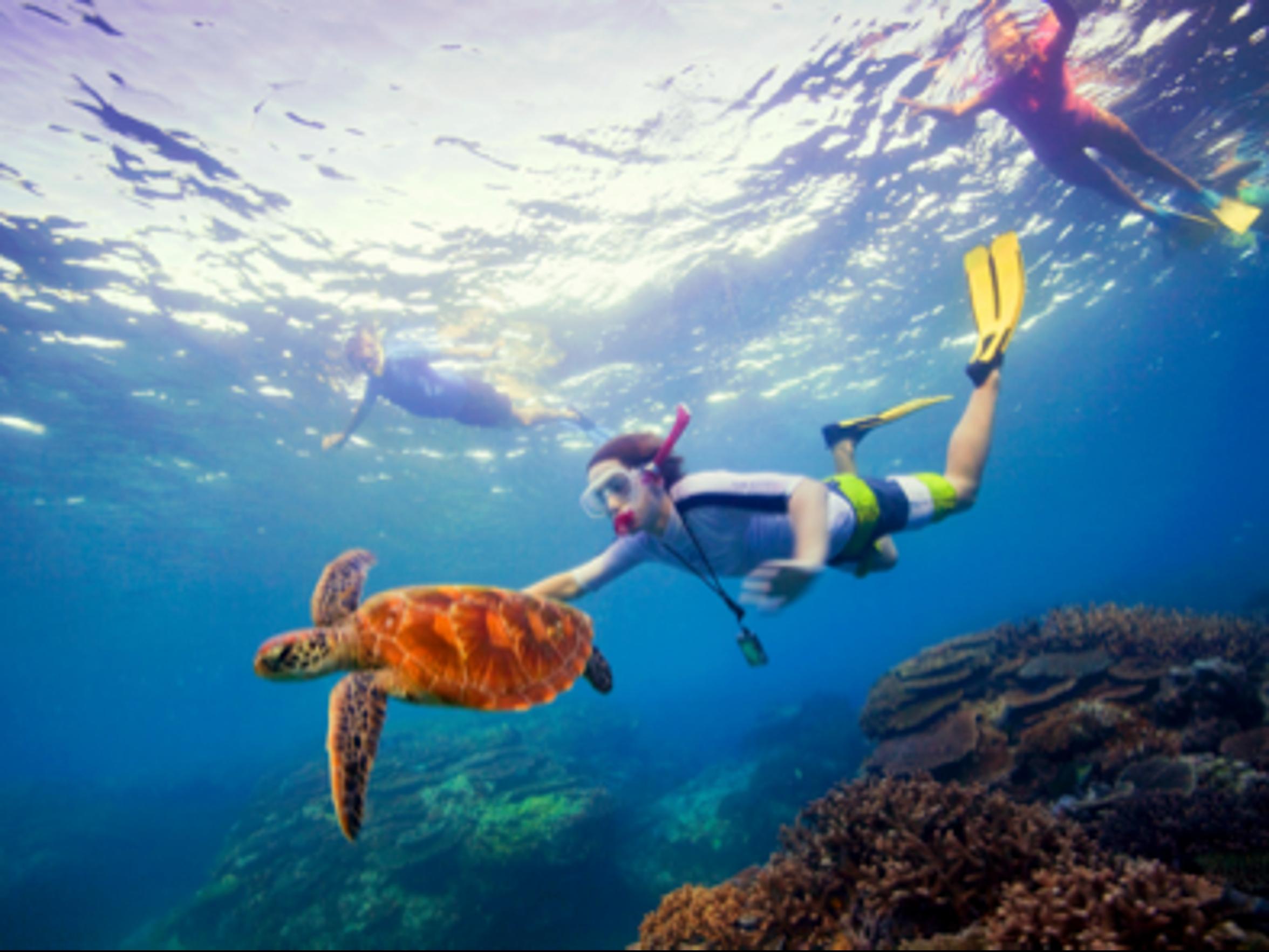 4 amazing Australian travel itineraries