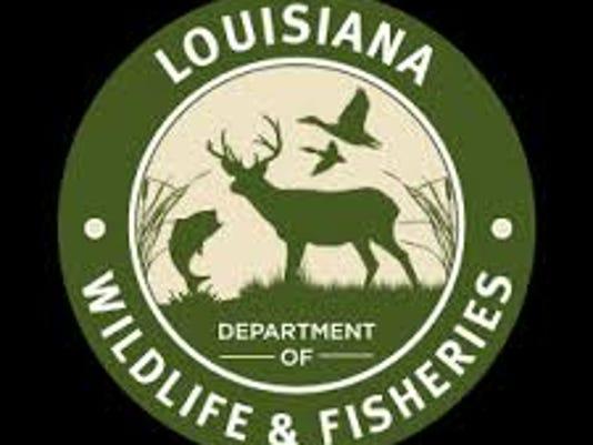 635933311928111619-ldwf-logo.jpg