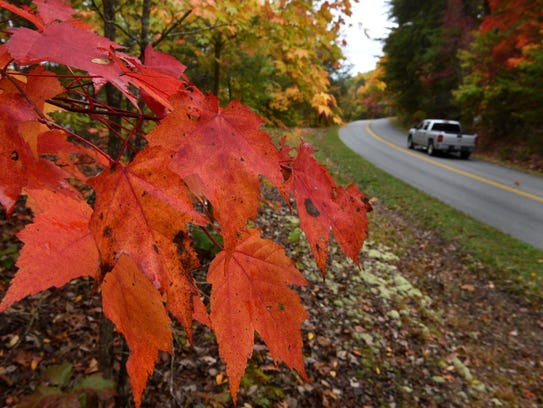 Fall colors are changing in the Foothills Parkway area