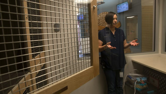Stacie Voss, director of Farmington Regional Animal Shelter talks about the shelter's arrangements to take care of chickens and rabbits on Monday at the Farrmington Regional Animal Shelter.