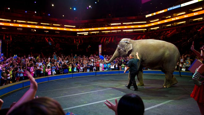 One of the circus elephants makes an appearance during the All Access Pre-Show on June 25, 2014, part of The Ringling Bros. and Barnum & Bailey Circus.