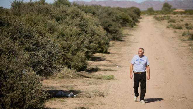 Kerry Starr, general manager of Purcell Jojoba International, worries the 1,300-acre, desert-plant farm will be condemned for an SRP power plant.