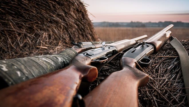 Hunting shotguns on haystack.