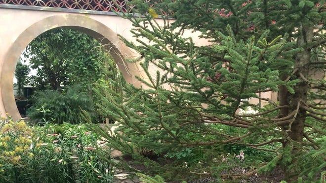 "An evocation of ""Mrs. Rockefeller's Garden"" in the Enid Haupt Conservatory of the New York Botanical Garden."