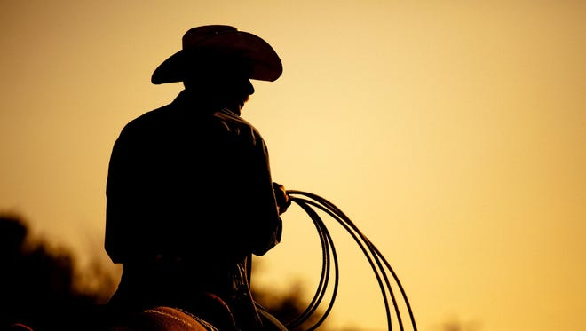 Rodeo cowboy silhouette.