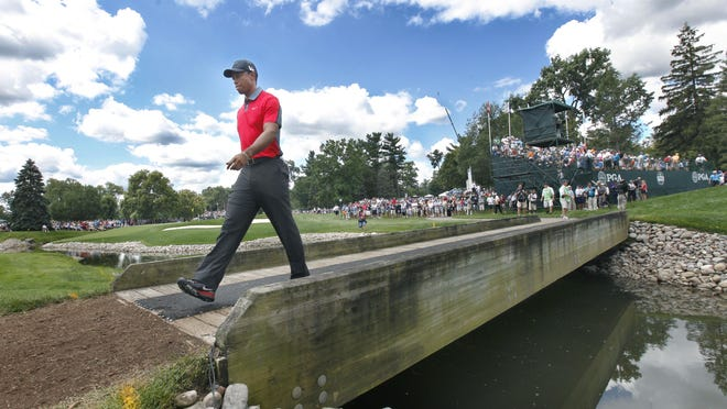 Tiger Woods walks to 6 during the final round of the 95th PGA championship at Oak Hill Country Club in Pittsford, N.Y. on Sunday, August 11 2013.