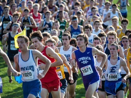 Cedar Crest's Jesse Cruise (center) fights his way
