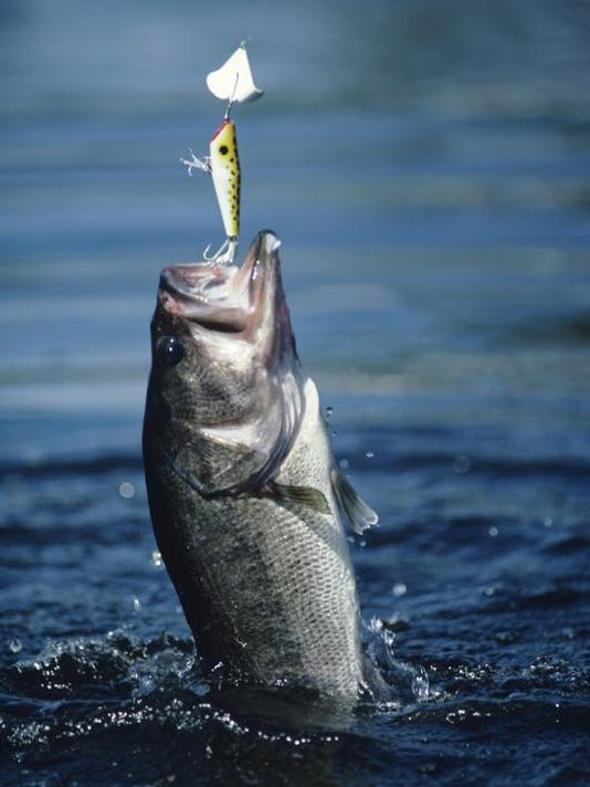 -SNLBrd_05-03-2012_NewsLeader_1_C002~~2012~05~02~IMG_snl0503_out-fish.jpg_2_.jpg