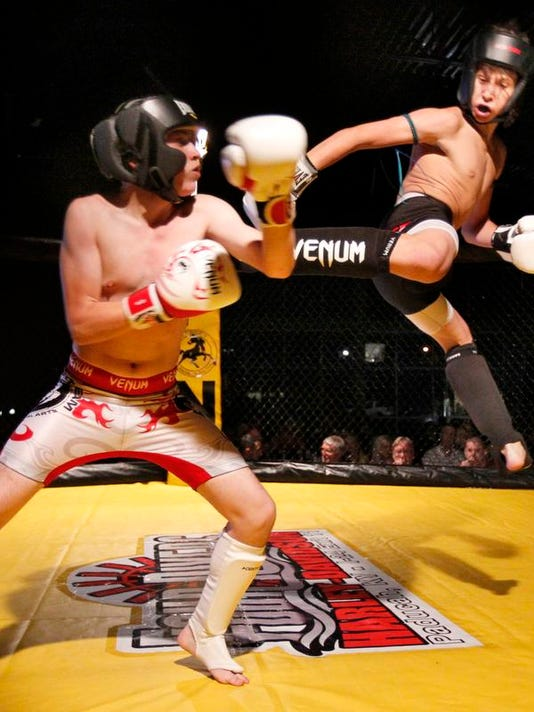 MMA fights 01.jpg