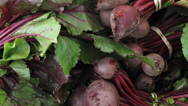 Beet seeds can go into the ground in March. Plant them 1 to 2 inches apart.