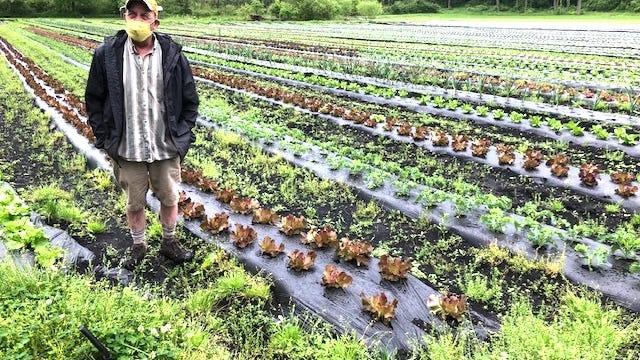 Jon C. Smith at his Red Brush Road produce farm.