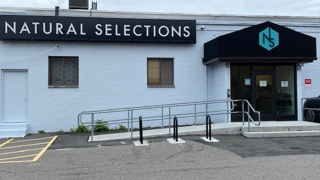 Natural Selections, 23 Elm St., Watertown