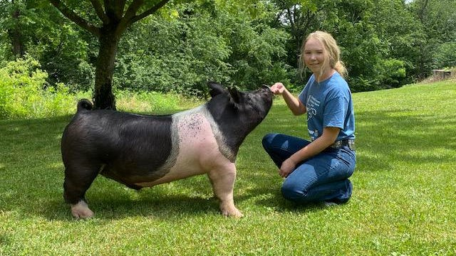 Allison Robinette poses with her market hog as she prepares for the 4-H and FFA Livestock Association Show and Auction, which will be held online this year. The auction will be held through SC Online Auction on July 10-11. Those wishing to purchase a beef, dairy cow, lamb or hog may log in to sconlinesales.com and register. For further information or assistance in signing up, call the Mineral County Extension Office at 304-788-3621.