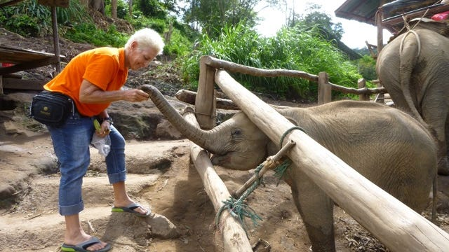 """Katherine """"K.G."""" Ann Grgich feeds a baby elephant while traveling through Thailand shortly before her death in Cambodia. Grgich was found dead on Oct. 1, 2013."""