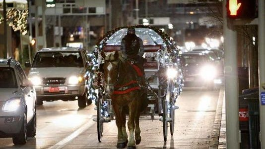 Two accidents involving horse-drawn carriages have occurred on the Taylor-Southgate bridge this week.