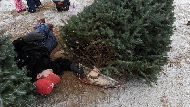 Riverview Christmas Tree Farm.