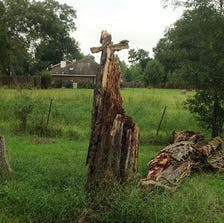 The Gillards say it all began when a storm caused a dead oak tree behind their house to collapse.