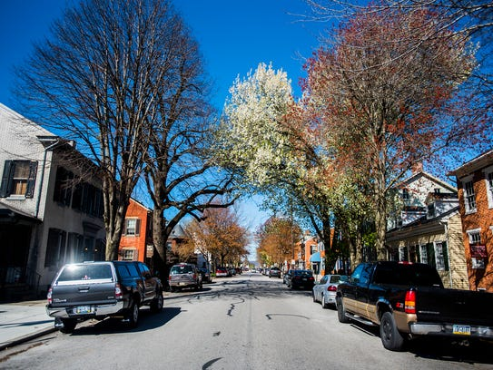 A Bradford pear tree on Broadway in Hanover on April