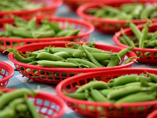 Beans from Ballard Farm.