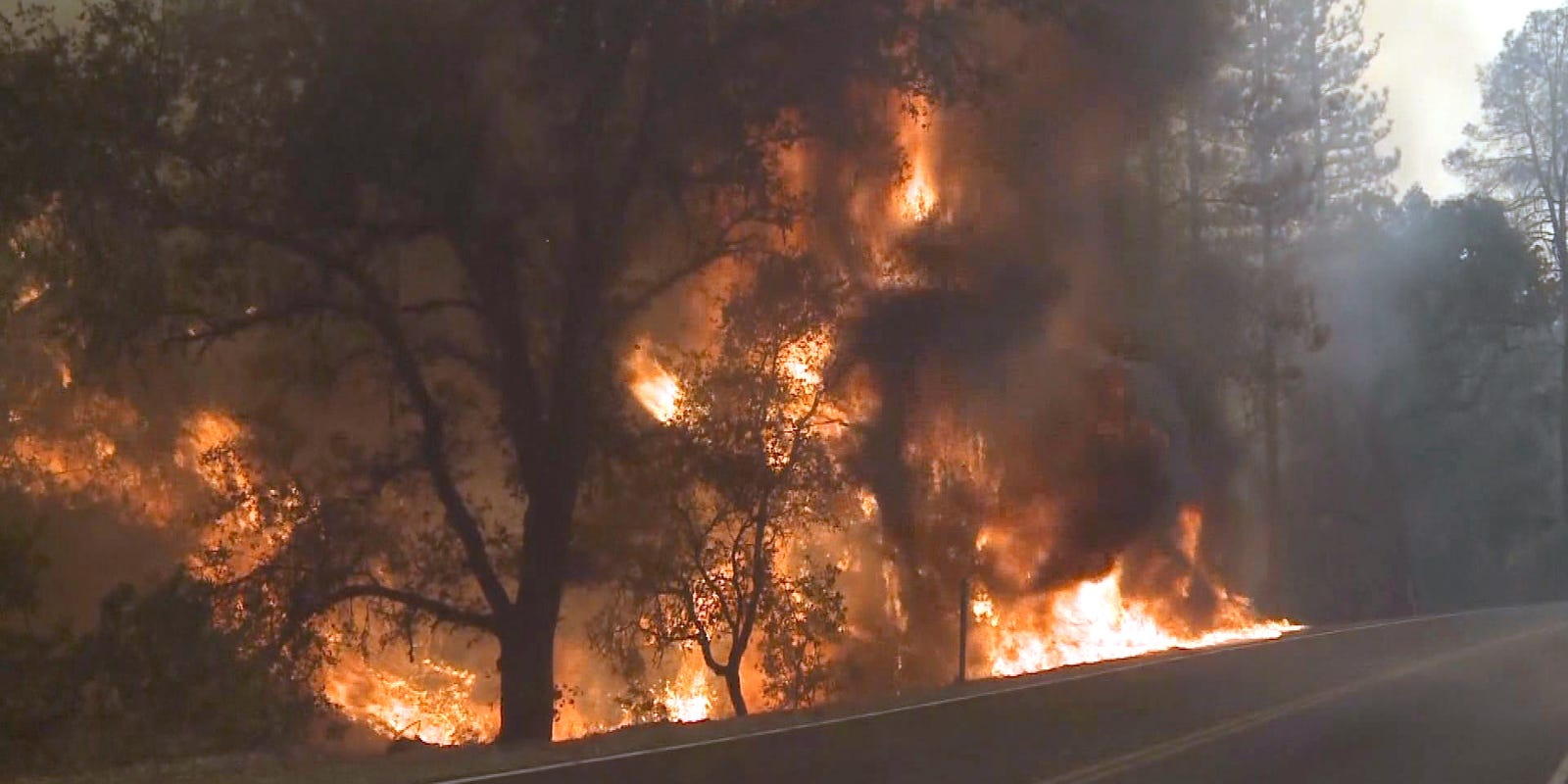 Http Firewood ~ 'explosive fire forces evacuations in northern calif