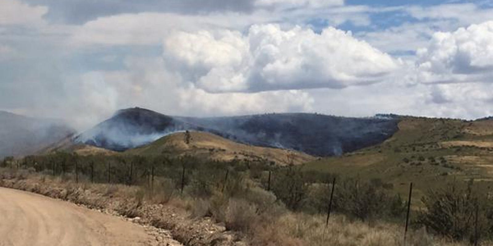 Http Firewood ~ Blm pooping cyclist started foothills fire