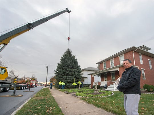Brent Hatterer planted the future York Christmas tree in 1981 with his father, Joseph, who has since died, in the 2200 block of West Manchester Township.  Crews lifted the tree to it's new home Tuesday.